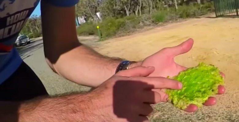 VIDEO: ¿Es posible que una 'súper sandía' sobreviva una caída de 45 metros?