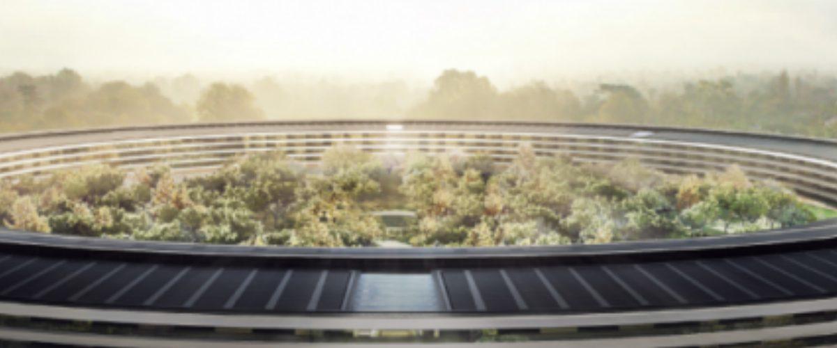 VIDEO: Así va la construcción de la oficina más grande del mundo