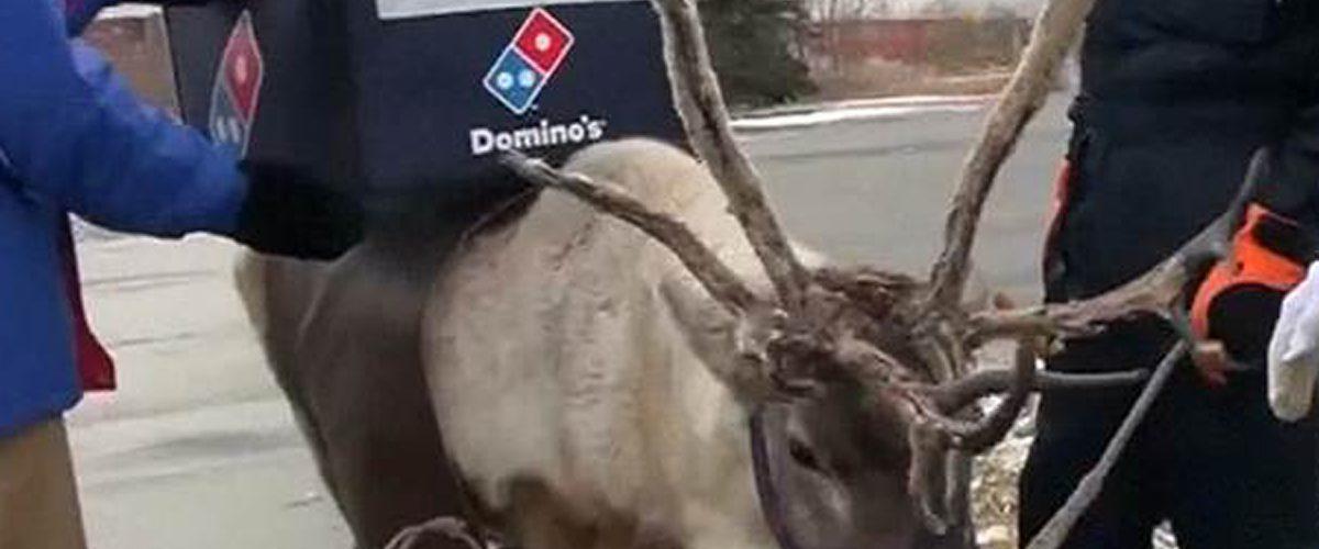 Domino's Pizza Japón