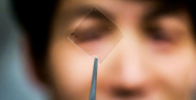 Los teléfonos ultra-delgados y flexibles del futuro tendrán pantallas de plata