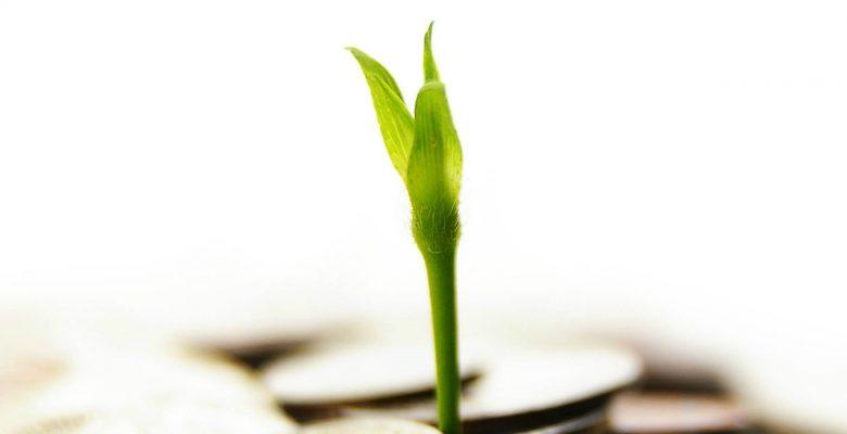 ¿Qué es una deducción de inversiones y para qué te sirve?