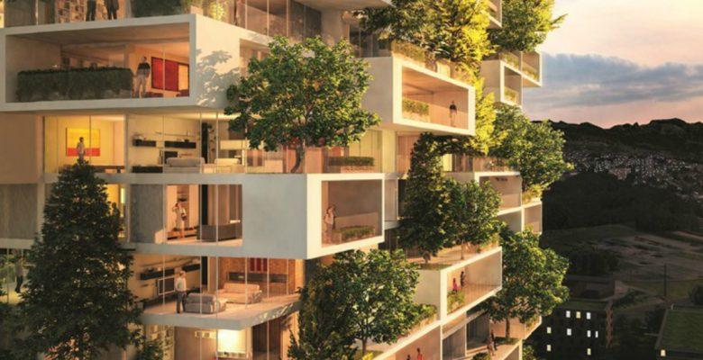 Esta contaminada ciudad quiere limpiar su aire con un bosque artificial