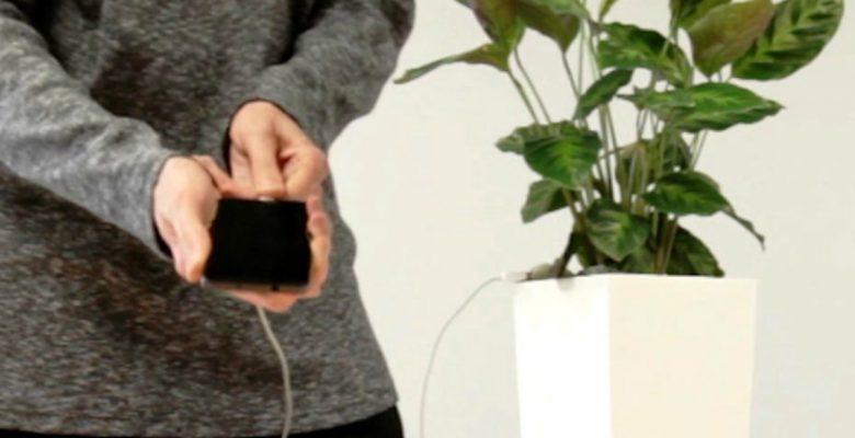 Bioo Lite, la maceta que recarga tu celular