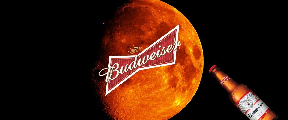 Así llegará la cerveza antes que el hombre a Marte
