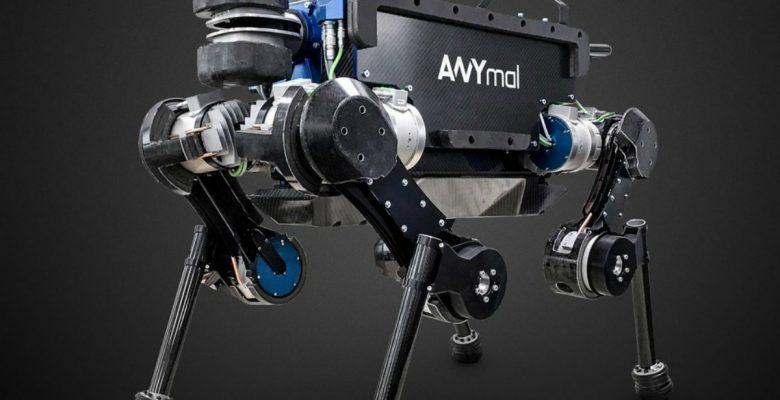 ANYmal, el asombroso robot cuadrúpedo que es autónomo y sabe pedir elevadores