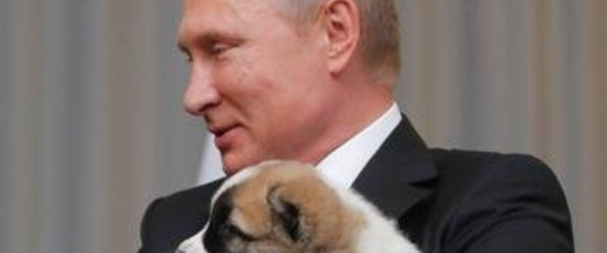 El calendario oficial de Vladimir Putin existe y TIENES que ver las fotos