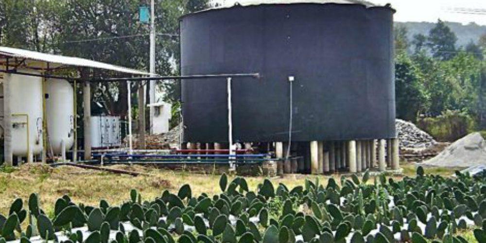 La primera planta distribuidora de gasolina hecha a base de nopal