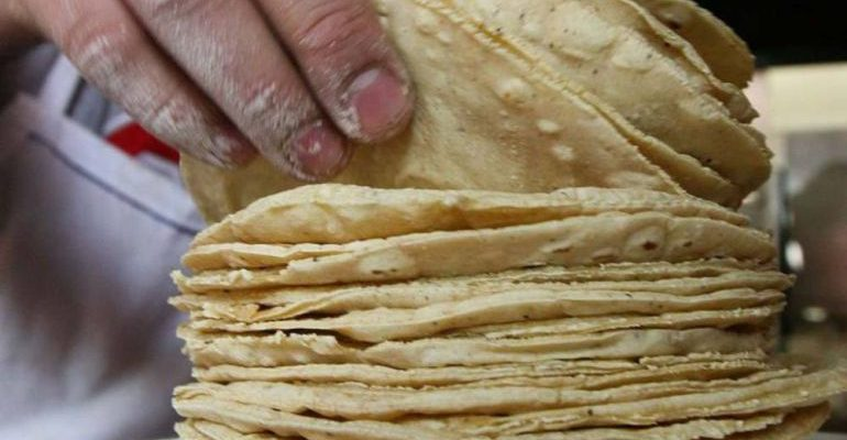 Crean tortillas que ayudan a combatir la obesidad y diabetes
