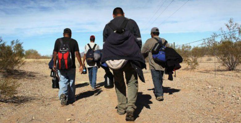 Emilio Braun Burillo pide apoyar a instituciones que defienden los derechos de migrantes