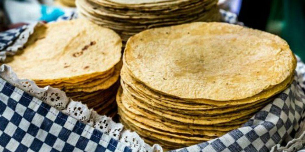 Aseguran que nueva ley de maíz hará que el kilo de tortilla cueste entre 40 y 60 pesos
