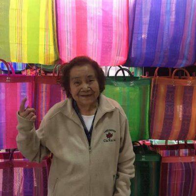 abuelita bolsas Zara