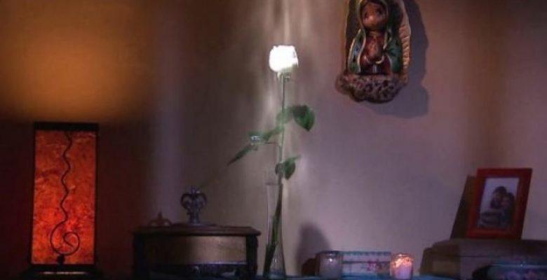 """Creador de la 'Rosa de Guadalupe' explica el significado del """"airecito"""""""