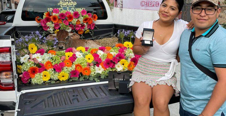 Joven le regala un becerro a su novia por su primer aniversario