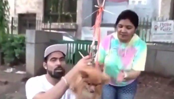 Arrestan a youtuber por amarrar a su perro con globos para que volara