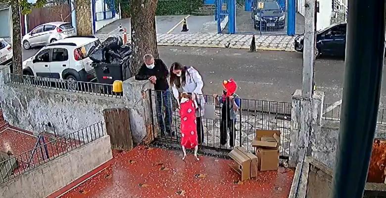 Le regalan otro suéter a perrito que fue víctima de la delincuencia