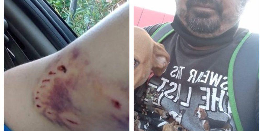 Hombre rescata a una perrita callejera que le mordió el brazo